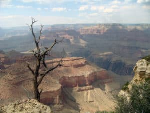 Die tiefe Schlucht des Grand Canyon in Arizona (South Rim)