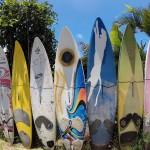 Bunte Surfbretter nebeneinander in der Reihe in den Sand gesteckt.