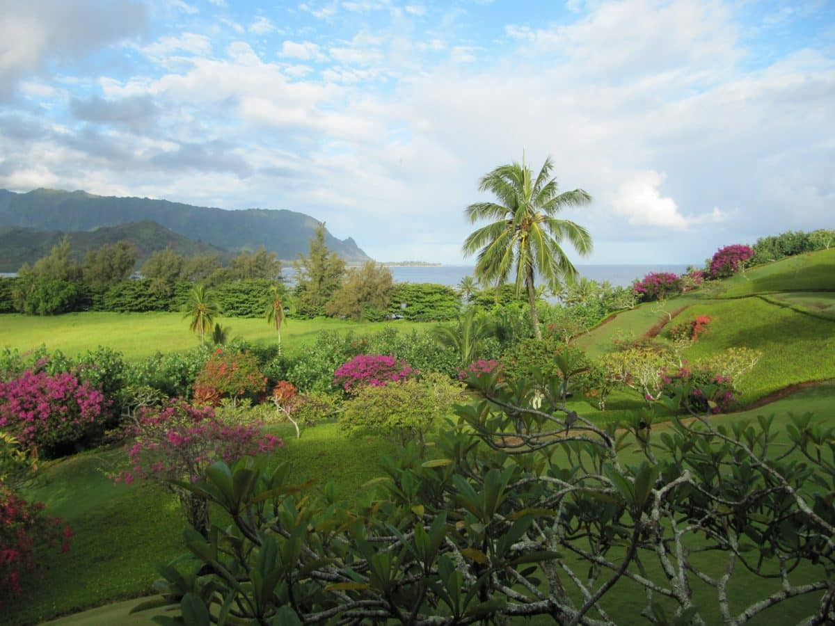 Insel Kauai auf Hawaii.