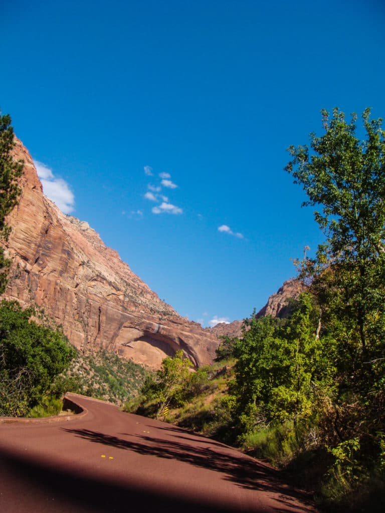 Straße im Zion Nationalpark.