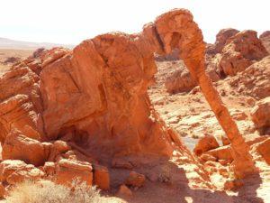 Die beliebteste Felsformation im Valley of Fire: Der Elephant Rock.