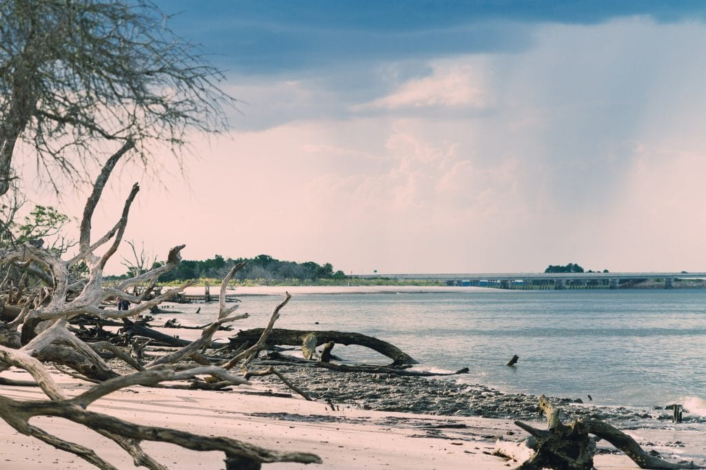 Talbot Island Beach in Jacksonville, Florida